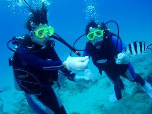 体验潜水 (1)